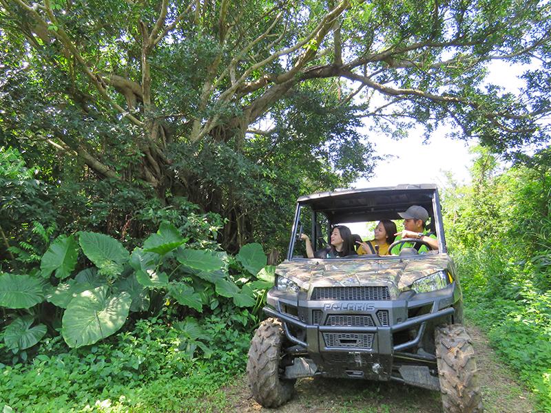 【通年】糸満BIGバギージャングル体験