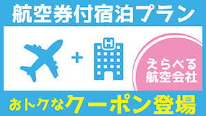 Accommodation plan with airline ticket: Advantageous coupon appearance