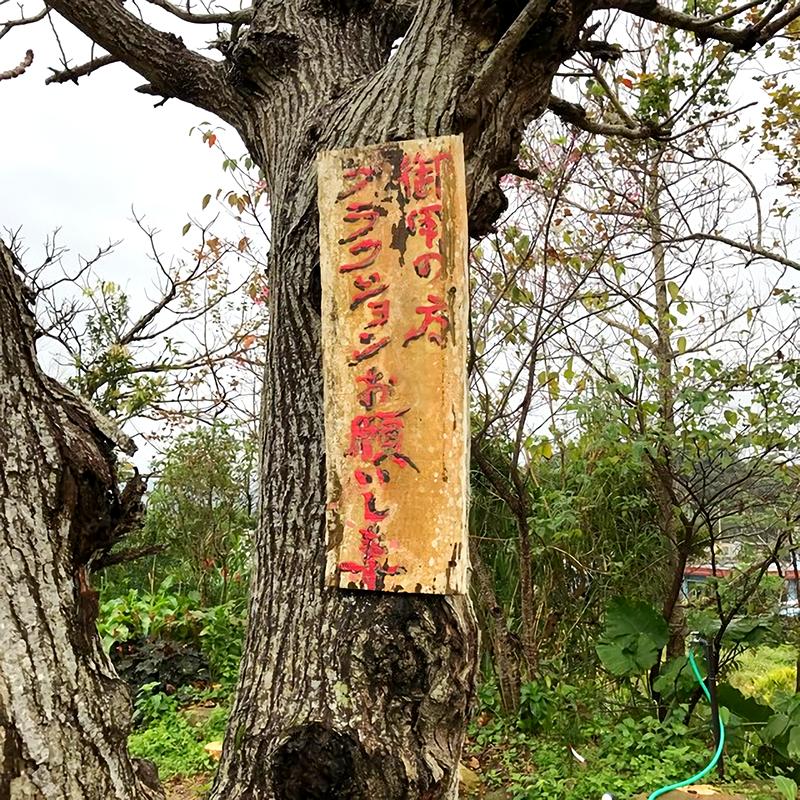 沖縄の焼き物~古我知焼き~