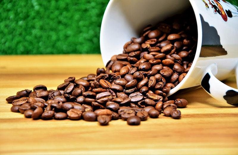 cafe gyutto