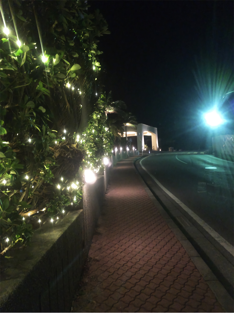 沖縄の寒さ!