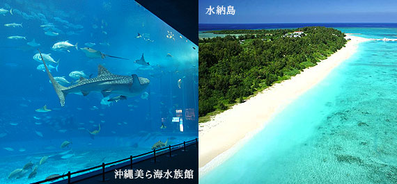 The northern area Okinawa Churaumi Aquarium, Minna Island which are popular among tourists